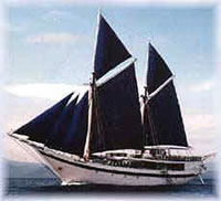 Traditional Indonesian Sailing Boat
